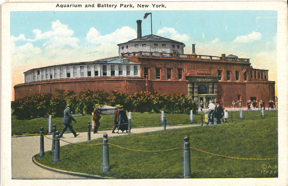 Battery Aquarium